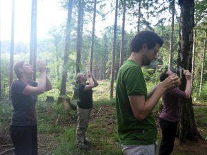 Erfahrungsbericht Wildnis-Workshop: Zurück aus dem Wald!